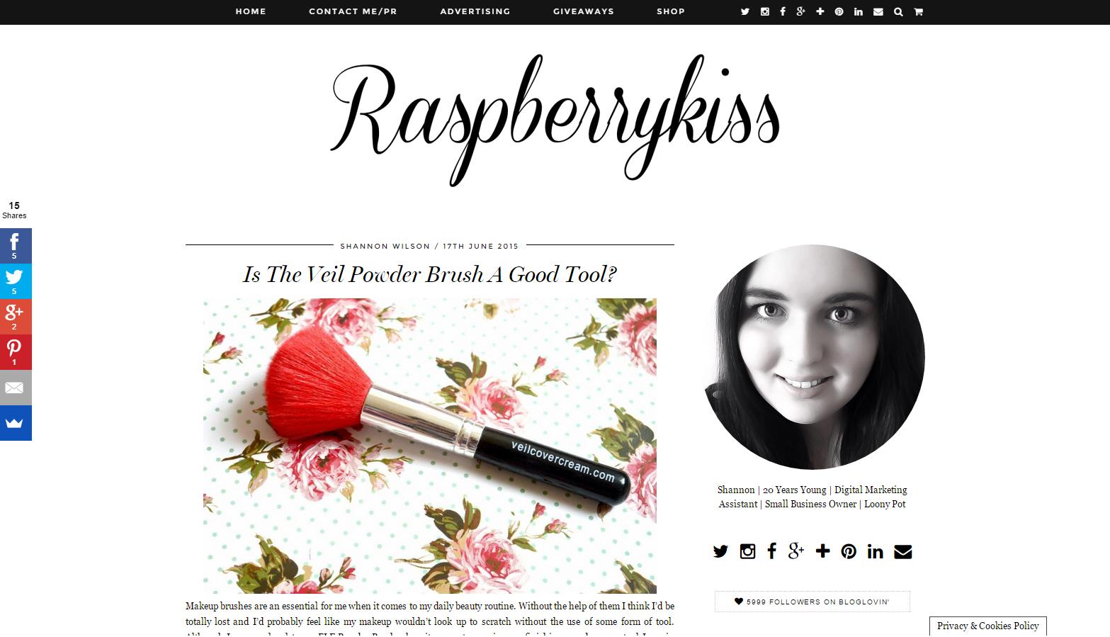 Veil Powder Brush Featured On Raspberrykiss