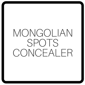 Mongolian Spots Concealer